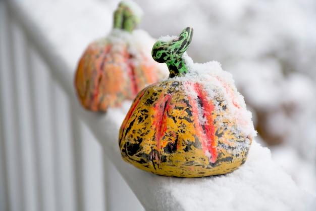 Citrouilles colorées faites à la main sur le porche recouvert de neige photo de haute qualité