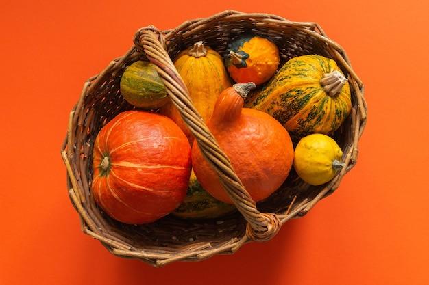 Citrouilles dans un panier en osier sur fond orange