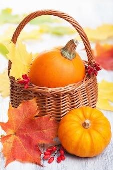 Citrouilles décoratives et feuilles d'automne dans le panier