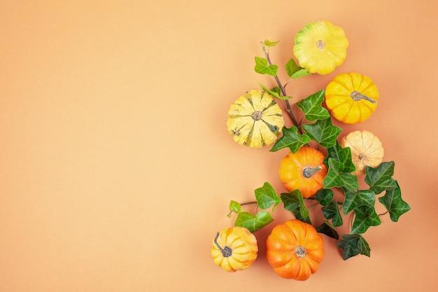 Citrouilles et feuilles sur fond pastel