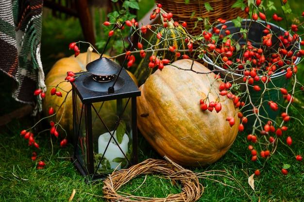 Citrouilles gisent sur le sol, automne, lanterne