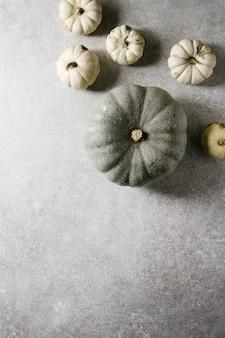 Citrouilles grises et blanches