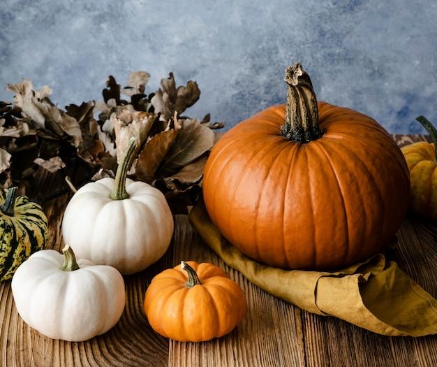 Citrouilles d'halloween jack o' décoration lanterne