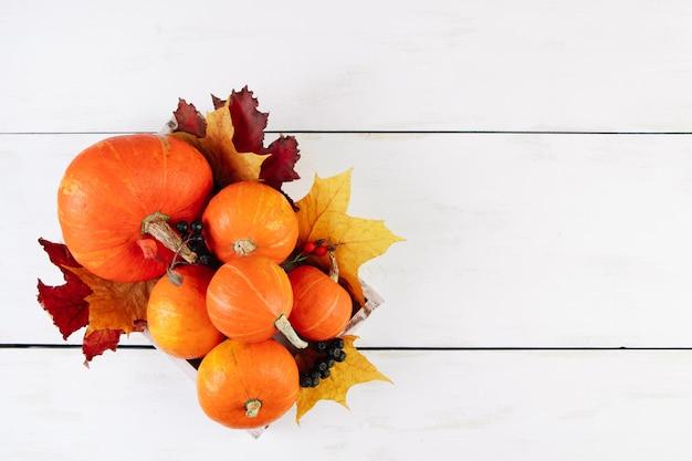Citrouilles orange mûres et feuilles d'érable sur fond blanc. récolte d'automne et concept de thanksgiving.