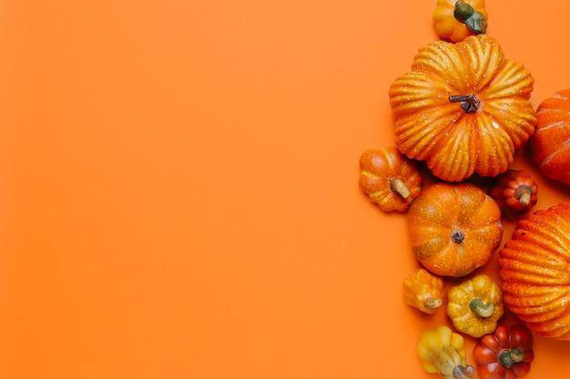 Citrouilles pour l'automne