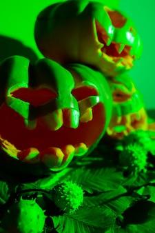 Citrouilles sculptées pour halloween en feu vert