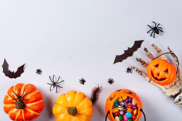 Citrouilles, toile, chauves-souris, araignées, mille-pattes et mouches sur fond gris.