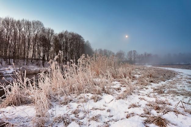 Clair de lune à l'aube d'hiver