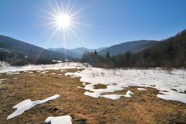 Clairière de la forêt entourée de forêts de conifères par une journée de printemps ensoleillée. neige fondante, ciel bleu clair