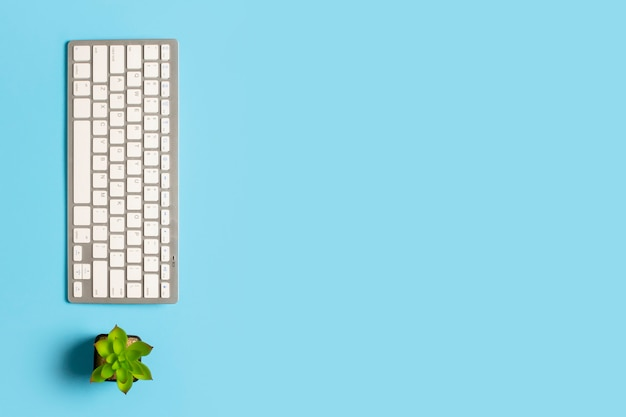 Clavier et fleur sur fond bleu. espace de travail de concept, travail à l'ordinateur, indépendant, bureau.