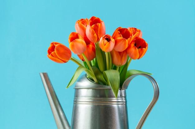 Close-up d'arrosoir avec de jolies tulipes