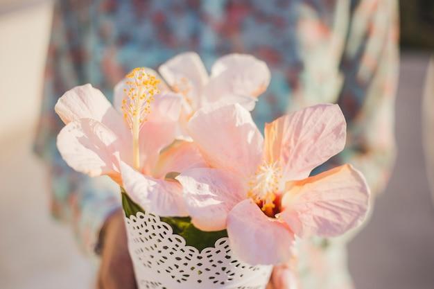Close-up de jolies fleurs aux contours flous personne fond