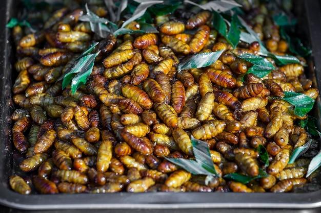 Close up larve d'une nymphe qui est cuit à un aliment de rue de la population rurale, thaïlande. larves frites sur le marché alimentaire à vendre