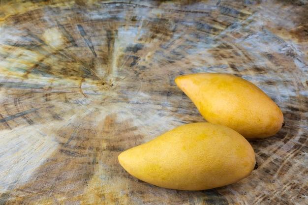 Close up mangues fraîches jaunes sur table en bois véritable. fruits tropicaux de mangue. 2 mangues