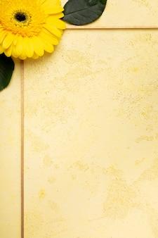 Close-up mignonne marguerite jaune et petit cadre de fleurs violettes