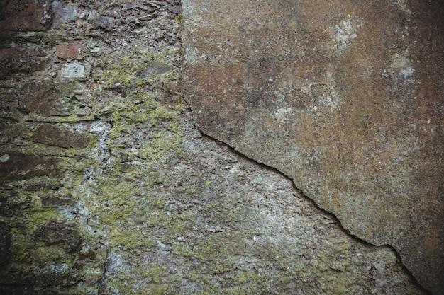Close-up de mur de pierre surmonté