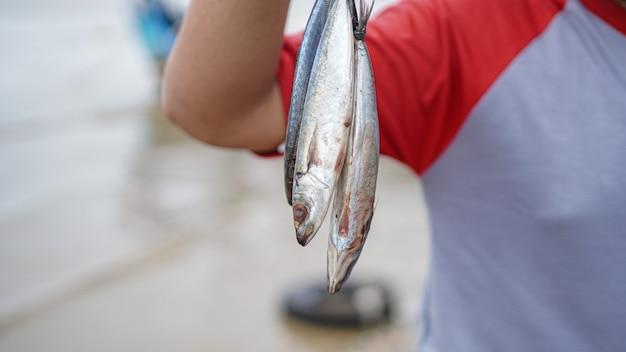 Close up pêcheur obtenir du poisson de sa pêche à la plage