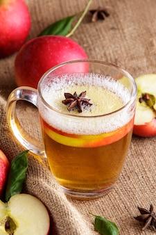 Close up portrait de cidre de pomme avec bâton de cannelle et tranche de pomme