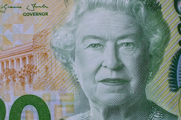 Close up portrait détaillé de la reine elizabeth ii sur les billets en dollars néo-zélandais