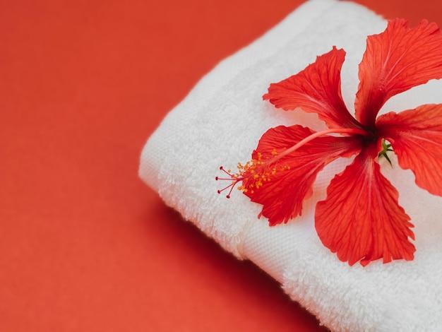 Close up serviette avec fleur sur le dessus
