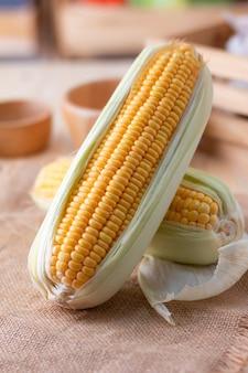 Close up shot maïs frais riche en vitamines, mûr et pelé, à base de maïs