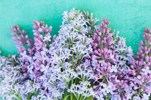 Closeup fleurs violettes sur fond bleu