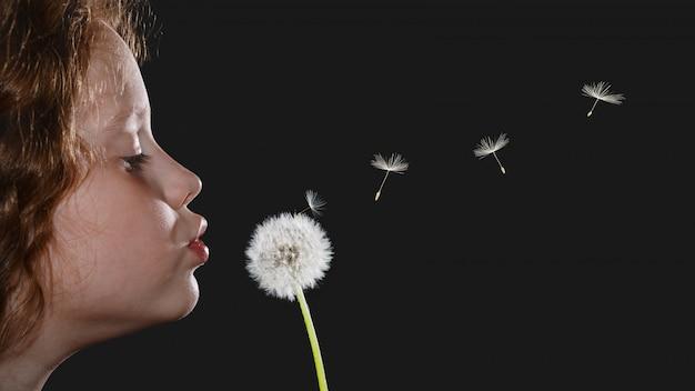 Closeup portrait petite fille soufflant tête de pissenlit et graines volantes sur fond noir.