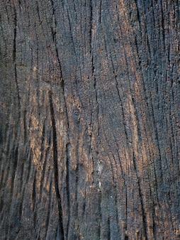 Closeup texture séchée d'écorce brun foncé.