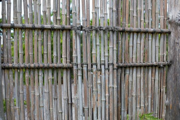 Clôture de bambou dans un jardin japonais