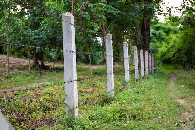 Clôture barbelée et poteau en béton dans le jardin.