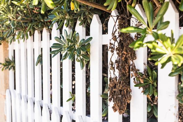 Clôture en bois blanc de style comté. clôture blanche en perspective.