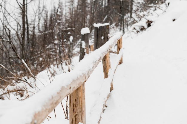Clôture en bois en hiver