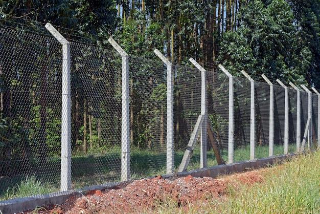 Clôture en grillage avec poteau en béton sur plantation d'eucalyptus