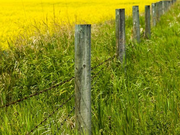 Clôture le long des terres agricoles pincher creek, sud de l'alberta, alberta, canada