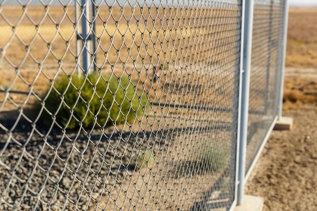 Clôture à mailles de chaîne, clôture métallique ou acier grillagé