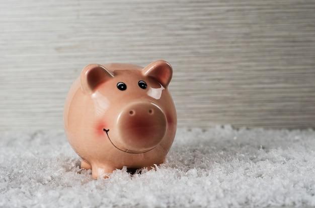 Cochon rose sur le fond de neige 5