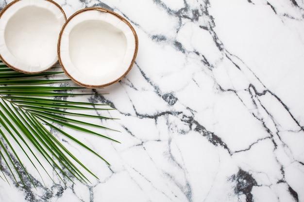 Coco tropical et palmier sur marbre