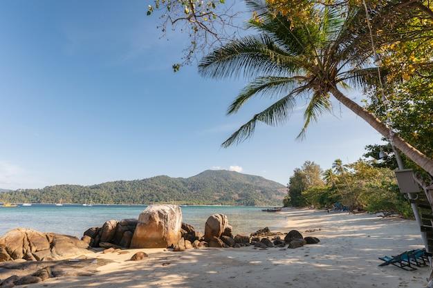 Cocotier avec des rochers sur la plage en mer tropicale