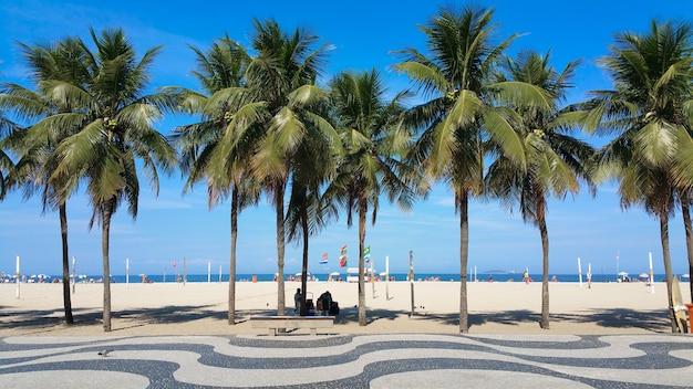 Cocotiers sur la plage de copacabana rio de janeiro brésil.