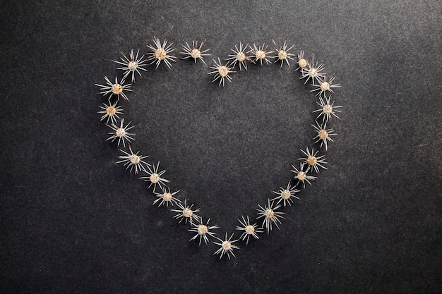 Coeur d'épines, concept d'amour saint valentin