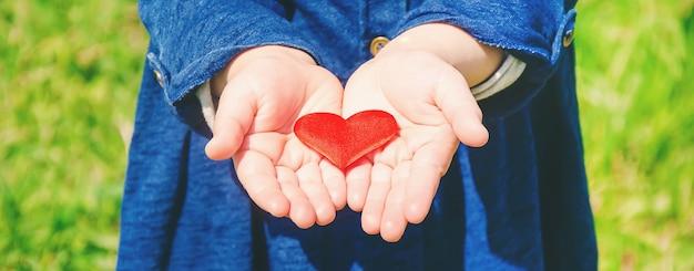 Le coeur est entre les mains de l'enfant. mise au point sélective.