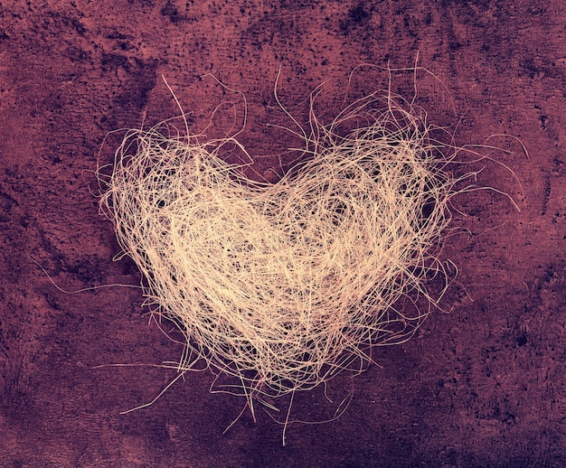 Coeur de luffa sur fond grunge marsala