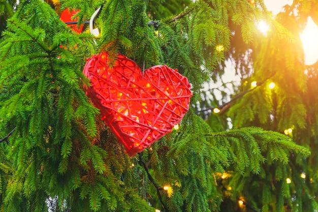 Coeur en osier avec décoration de lumières de noël sur des branches de sapin.