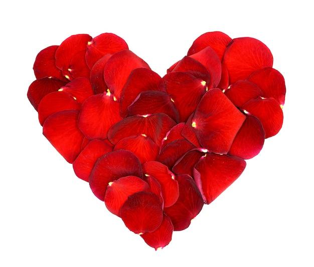 Coeur de pétales de rose rouge isolé sur blanc