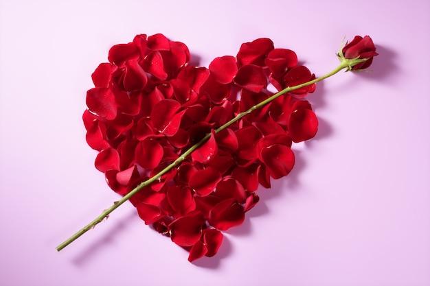 Coeur de pétales rouges, métaphore de fleurs de la saint-valentin