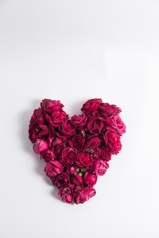 Coeur de roses roses fraîches sur blanc