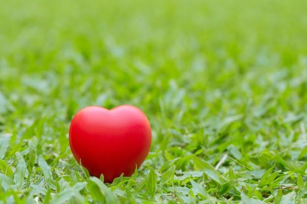 Coeur rouge placé sur l'herbe verte