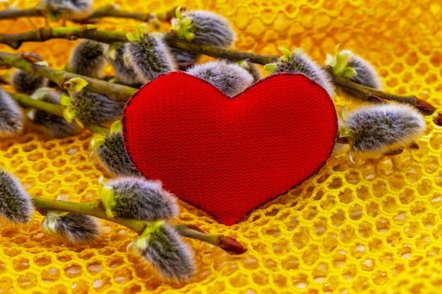 Coeur Rouge Près Des Branches De Saule Avec Boucles D'oreilles Photo Premium