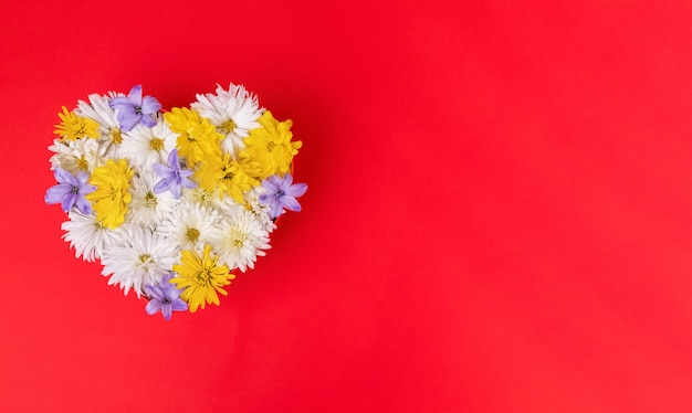 Coeur saint valentin fait de belles fleurs isolés sur fond rouge