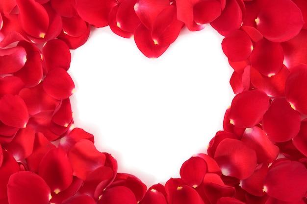 Coeur valentine avec des roses rouges pétales